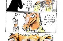 "ד""ר סוס"